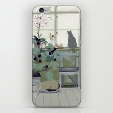 Indoor Garden With Fig Tree iPhone & iPod Skin