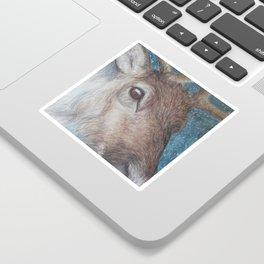 Reindeer (Rangifer tarandus) Sticker