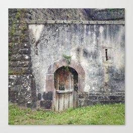 Doors of Perception 1 Canvas Print