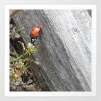 ladybug Art Prints featuring Ladybug by Zen and Chic