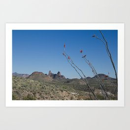Mule Ears with Ocotillo Art Print