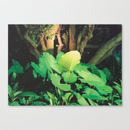 In the Park I Canvas Print