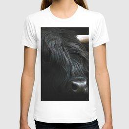 Minimalist Black Scottish Highland Cattle Portrait - Animal Photography T-shirt