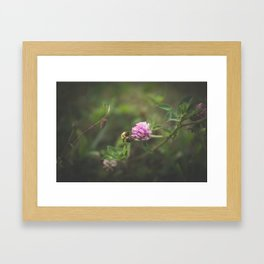 A bee Framed Art Print