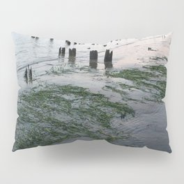 Water plants at low tie Pillow Sham