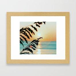 OBX sunrise Framed Art Print