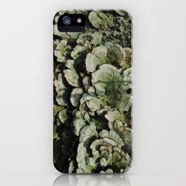 Forest Mushrooms iPhone Case
