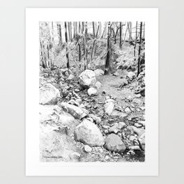 Running creek. Art Print