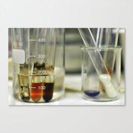 Test tubes Canvas Print