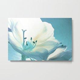 Beauty in Light Blue  Metal Print