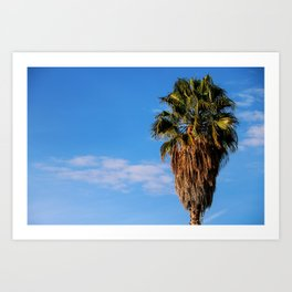La Brea Palm Art Print