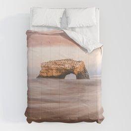 Santa Cruz, CA - Natural Bridges State Park Comforters