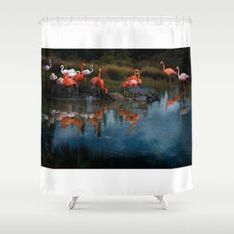 Flamingo Convention Shower Curtain