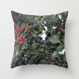 From a Winter's Walk Throw Pillow