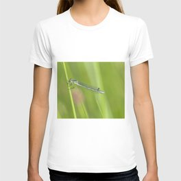 The little and beautiful green damselfly T-shirt