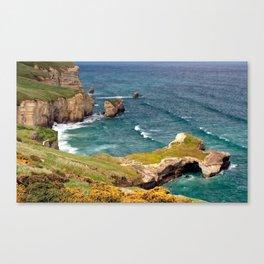Rugged Canvas Print