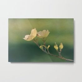 Colors of Spring: Green Metal Print