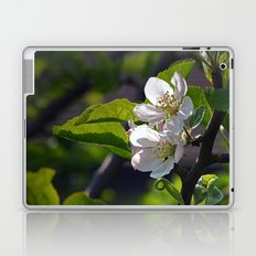 Apple Blossom Laptop & iPad Skin