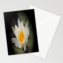 White Waterlily On A Dark Background #decor #society6 Stationery Cards