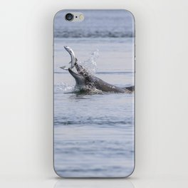 bottlenose dolphin eating a salmon iPhone Skin