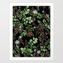 mid winter berries by ariadne