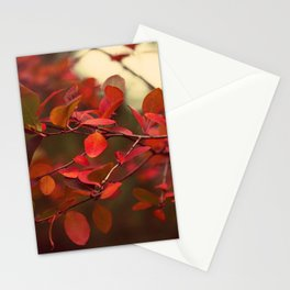 A Walk at Dusk Stationery Cards