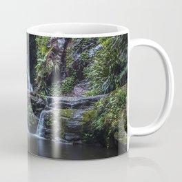 Elabana Falls in the Gold Coast Hinterlands Coffee Mug