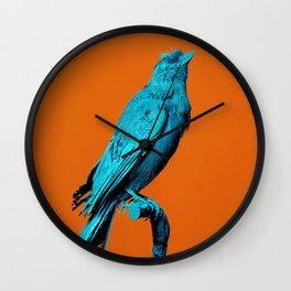 Colanimals, Jay Wall Clock