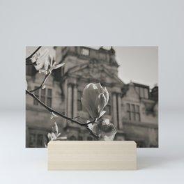 Understanding the Japanese Magnolia Mini Art Print