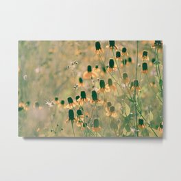 Yellow Prairie Mexican Hat Coneflower Meadow - Dreamy summer botanical Metal Print