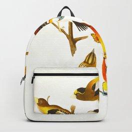Evening grosbeak John James Audubon Vintage Birds Of America Illustration Backpack