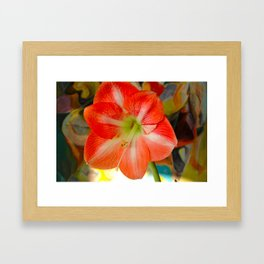 Spring has Sprung! Framed Art Print