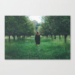 Wandering. Canvas Print