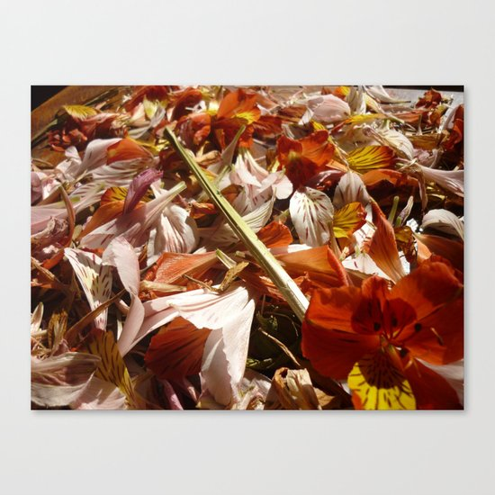 Flowers on a table  Canvas Print