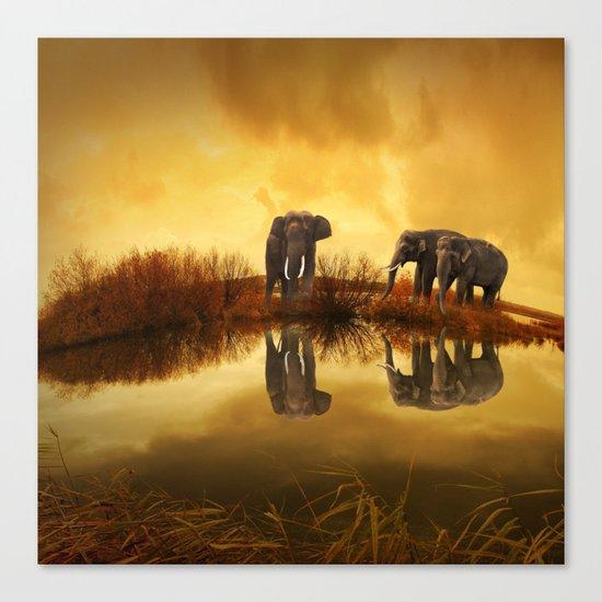 Elephant 3 Canvas Print