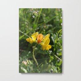 Gul blomst Metal Print