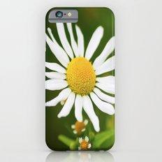 Wild Daisy Slim Case iPhone 6s