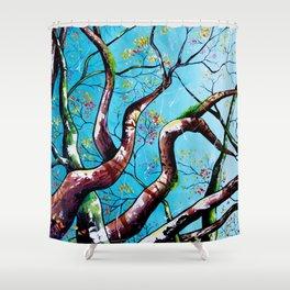 A Higher Consciousness Shower Curtain