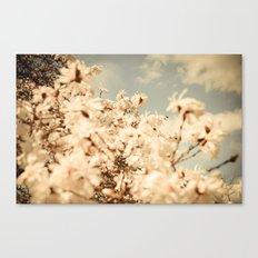 Aspiring to be a Cloud Canvas Print