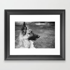 Baron Boy Framed Art Print