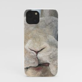 Jimmy The Bunny iPhone Case
