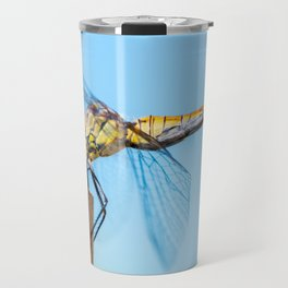 Beautiful colorful dragonfly insect resting on dried bamboo stick in summer taken in close-up Travel Mug