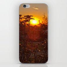 flower sunset  iPhone & iPod Skin