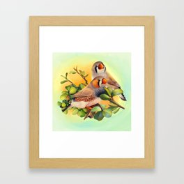 Zebra finches realistic painting Framed Art Print