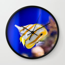 Butterfly fish Wall Clock