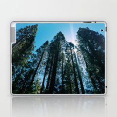 Sequoias Laptop & iPad Skin
