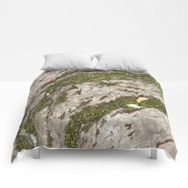 Mossy Stone Curves Comforters