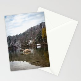 Beautiful scene of swan (lat. Cygnus olor) on the lake Stationery Cards