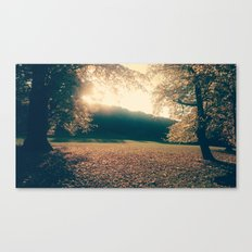 autumn comes and leafs Canvas Print