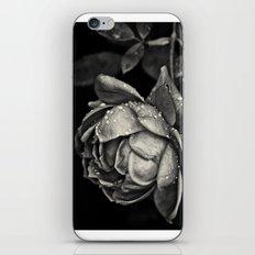 Elegy iPhone & iPod Skin